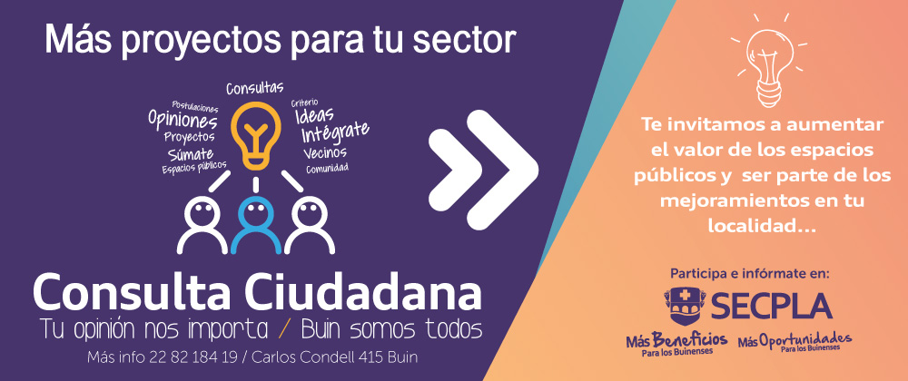 Banner-consulta-ciudadana