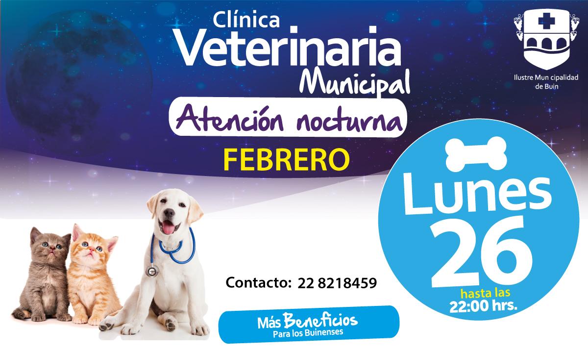 banner-veterinaria-nocturna-Febrero26