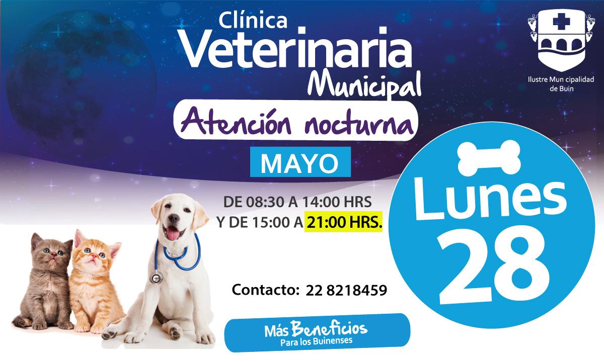 banner-veterinaria-nocturna-28-mayo-1