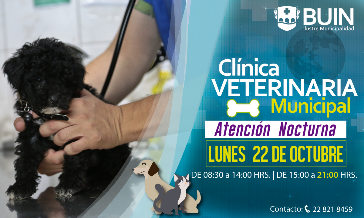 banner-Veterinaria-Nocturna-22oct